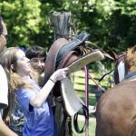 Saddling a Horse